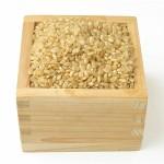 玄米生活の効用