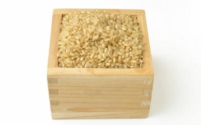 玄米生活の効用 -健全な身体を維持する-