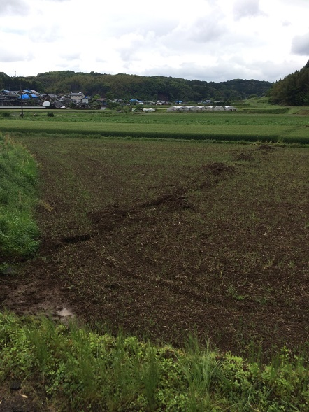 熊本地震益城町の活断層のズレの凄まじさとライフライン復旧の活躍