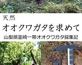 kindle本発刊しました『天然オオクワガタを求めて-山梨県韮崎一帯採集記-』